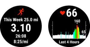 Bėgimo laikrodis Garmin Forerunner 55 funkcijos (1)